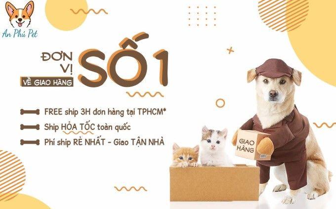 Phu Kien Cho Meo Tai TP HCM